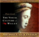 Clawr blaen 'The Visual Culture of Wales: Medieval Vision' (CD-ROM)
